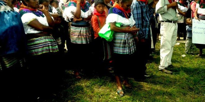 Chiapas: Señalan a dirigente de Morena, como operador en el despojo de territorio del ejido Bachajón
