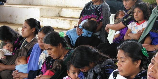Viernes 17 de enero: familias desplazadas forzadamente de ejido Puebla, en Chenalhó Chiapas, regresarán al corte de su café a pesar de no existir garantías a su seguridad.