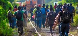 """México: """"sistema migratorio rápido para la detención; corrupto para tramites de regularización"""""""