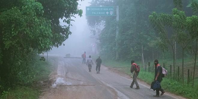 """Despojo al ejido Bachajón """"ambición por establecer el control y explotación de las tierras dentro del Proyecto Mesoamérica"""", CDMCH"""
