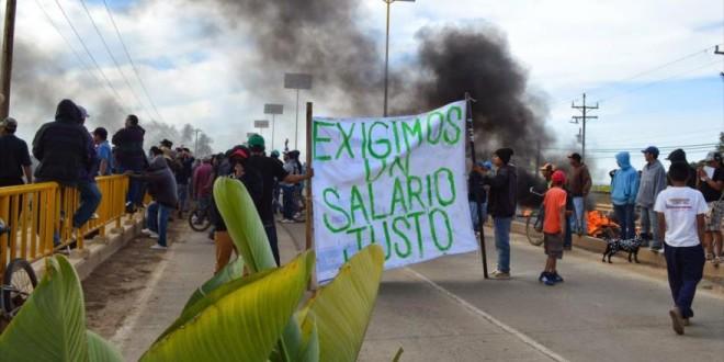Apoyan ONG demandas de las y los jornaleros agrícolas en San Quintín, representan el grito desesperado de millones