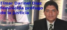 Elmar Darinel Díaz, ex-diputado federal por el PRI, evade sentencia condenatoria por feminicidio