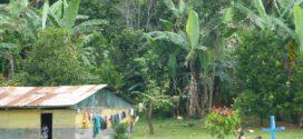 Chiapas: Ejidos de Ocosingo rechazan trazo de la brecha Lacandona