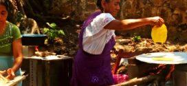 Autoridades ejidales hostigan a mujeres organizadas de Copoya Chiapas