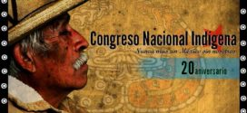 """CEI Michoacán: """"Pelearemos por la creación de Municipios Autónomos Indígenas sin partidos políticos"""""""