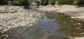 """Chiapas: """"la autoridad no suministra, ni preserva el agua"""", Observatorio Ciudadano"""