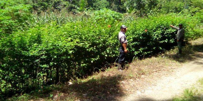 """Bachajón Chiapas: Comisariado exige a familias abandonar sus tierras, de lo contrario """"serán desplazados"""", amenaza."""