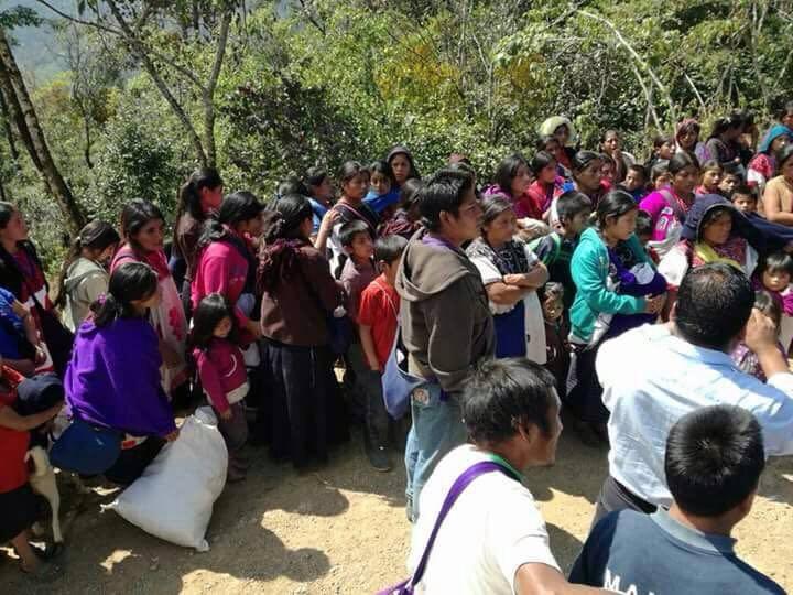"""Chiapas: """"demagógico manejo mediático del desplazamiento forzado, fortalece a grupos armados"""""""