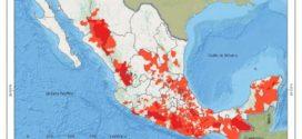 INE niega a la mayoría de la población sus derechos electorales: CAM UNAM