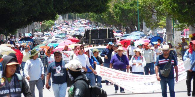 """AED_CNTE Chiapas: """"cadena de cambios no oferta la totalidad de espacios y horas disponibles"""", denuncia"""