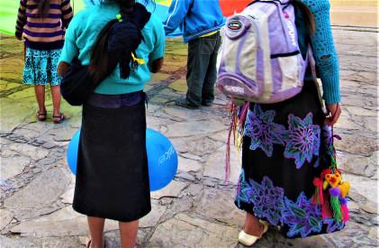 En Chiapas, con la población infantil más numerosa del país, ausente la agenda de infancia en el proceso electoral local: REDIAS