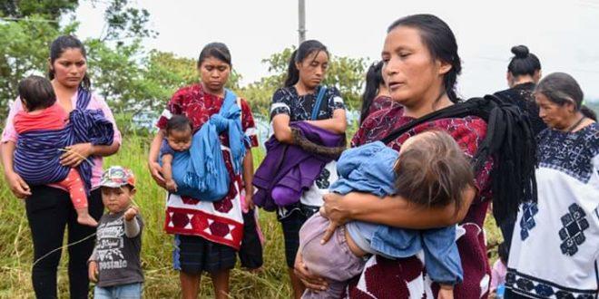 Chiapas: Continúan ataques con armas de fuego en Chalchihuitán, Frayba